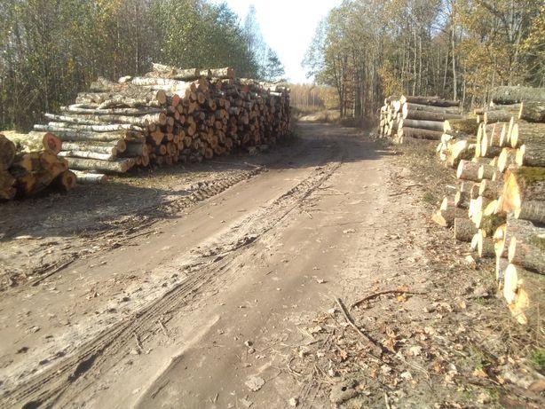 Drewno opałowe kominkowe oraz drewno konstrkcyjne na zamówienie