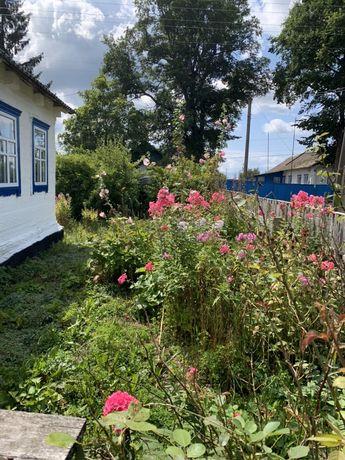 Дом в Житомирской области