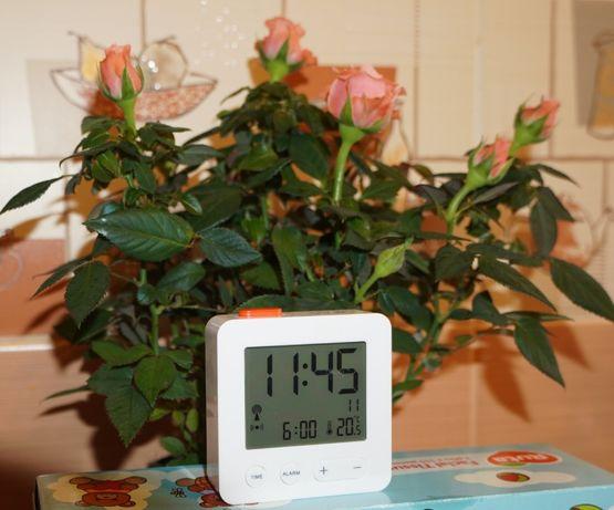 Цифровой радиоуправляемый будильник. Отображение температуры и даты