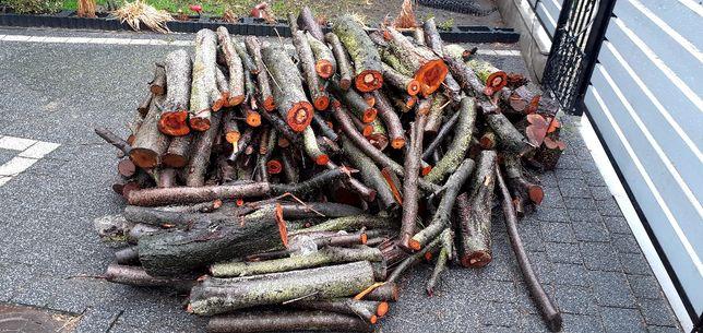 Sprzedam drewno śliwkowe do wędzenia lub palenia niecały 1m3