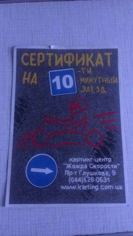 Картинг сертификат
