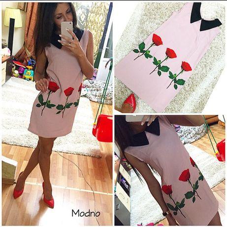 Плаття пудра з розами