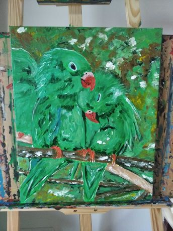 Obraz 40x50 papugi