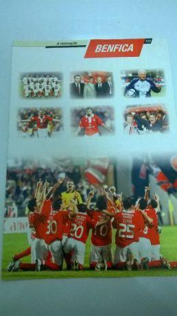 Benfica Campeão (portes incluídos)