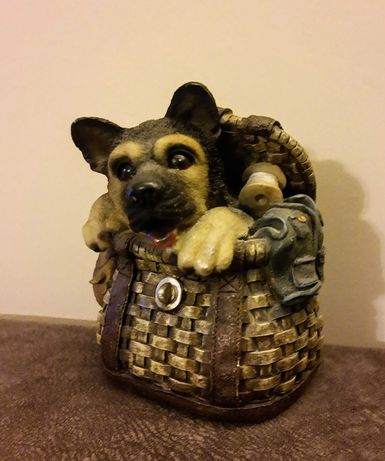Skarbonka pies owczarek w koszyku