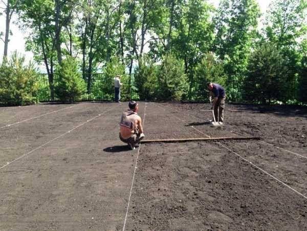 Подготовка под газон, выравнивание участка. Самая низкая цена