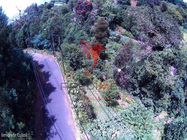 Terreno na Choupana com frente de estrada