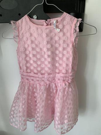 Coccodrillo sukienka elegancka 104