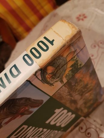 Książka 1000 dinozaurów
