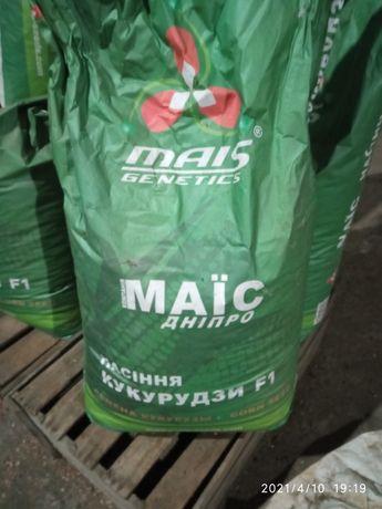 Семена кукурузы тренд
