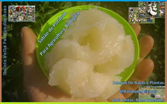 Sabão de Potássio Concentrado (Agricultura Biológica, 500g Leva 950g)