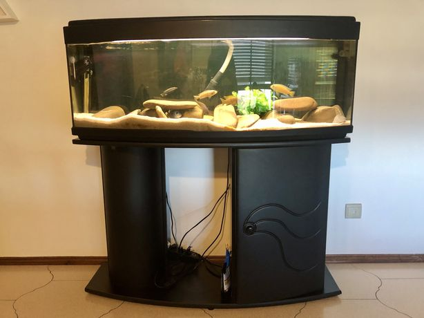Aquário curvo com móvel   120cm