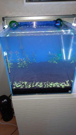 Kit Cubo Line Beta 40x40 vidro extra claro com acessórios