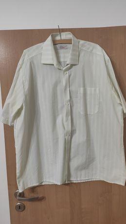 Koszula meska z krotkim rekawem 45/176/182