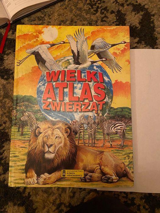 Książka dla dzieci Wielki atlas zwierząt Gdynia - image 1