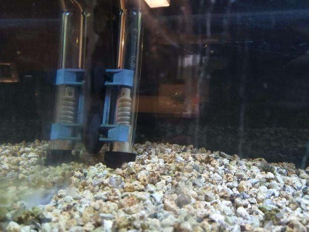 Termostato Elite 25w para aquário