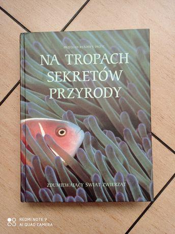 Książa Na Tropach sekretów przyrody