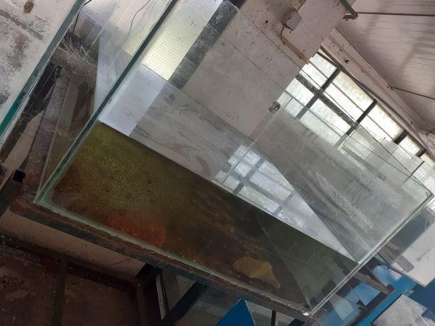 Aquário tanque criação 1metro x 1metro