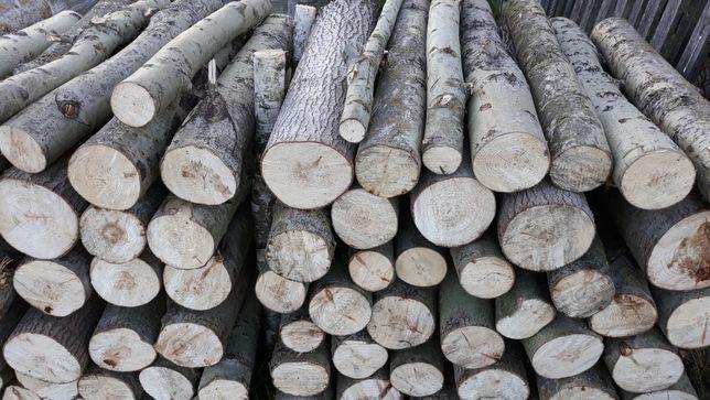 Drewno drzewo opałowe