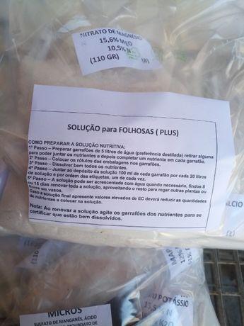 Hidroponia solução nutritiva para folhosas (PLUS)