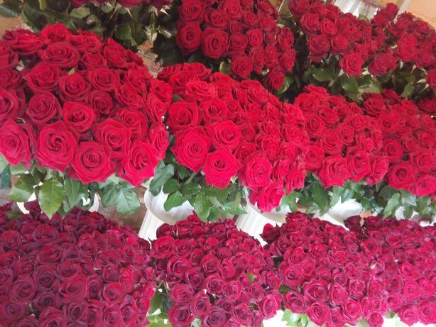 Розы.Цветы. В наличии.