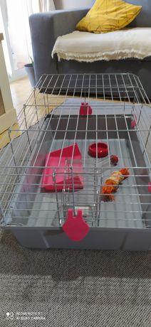 Gaiola para coelhos ou outros anmais