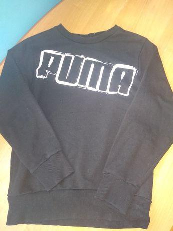 Sprzedam bluzę Puma