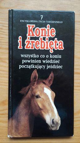 Konie i źrebięta Modlińska, encyklopedia życia codziennego