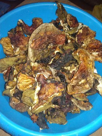 Сухі білі гриби та польські