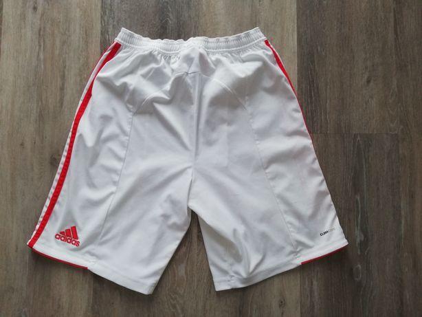 Calções Benfica - Adidas 13/14 anos e T.shirt