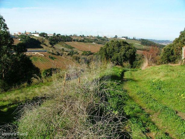 Terreno para venda, construção moradia, Caldas da Rainha