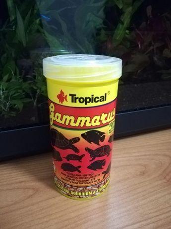 Sprzedam lub Zamienie pokarm tropical gummatus