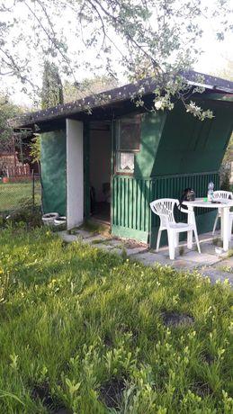 Działka ROD Storczyk 300 m z domkiem w Bloniu