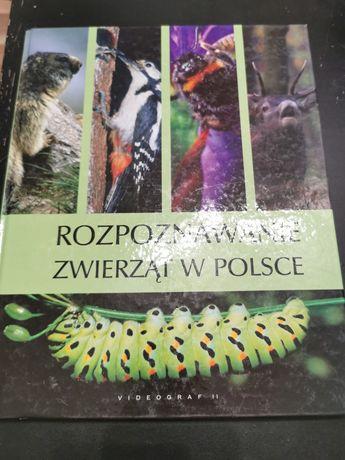 Rozpoznawanie zwierząt w Polsce książka stan igła
