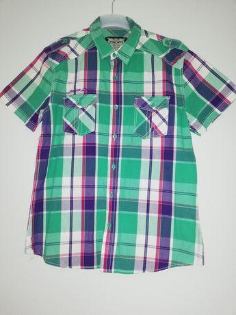 Koszule męskie w kratkę