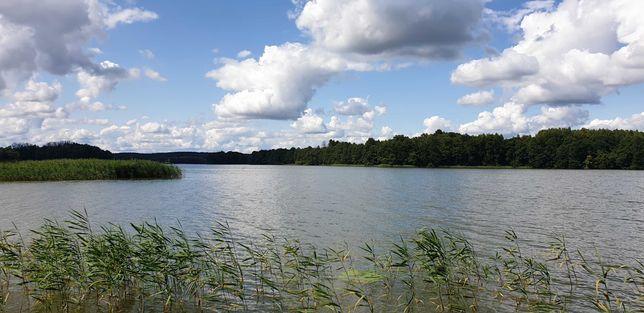 Działka w okolicy jeziora Dadaj i lasu