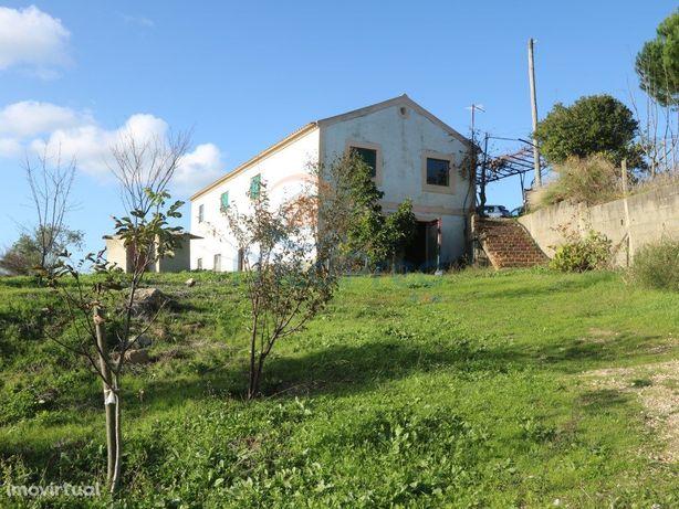 Quinta com Moradia na Carvalha