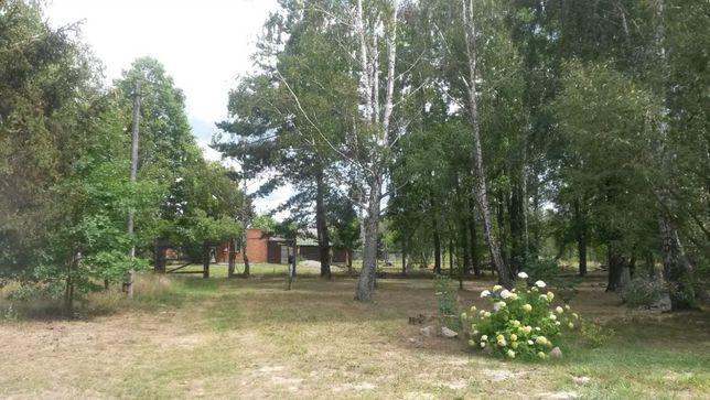 Посуточно гостевой домик на даче возле леса, баня на дровах