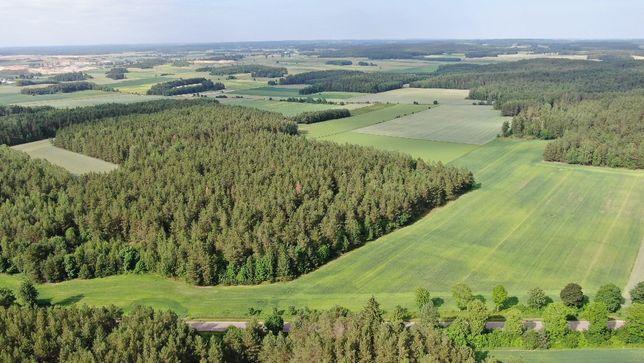Działka rolna z lasem na sprzedaż 8,5 ha. Las, grunty orne. Inwestycja