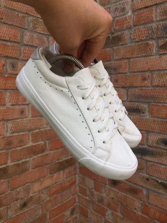 Кеды, кроссовки PRIMARK Размер 37 (23,5 см.)
