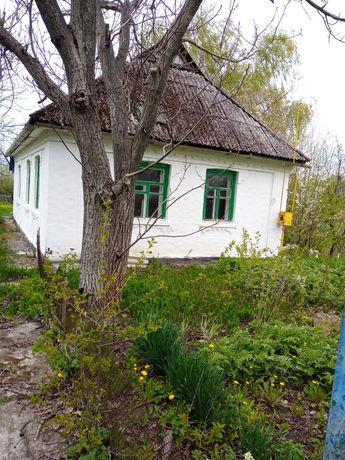 Продается дом и приватизированный земельный участок
