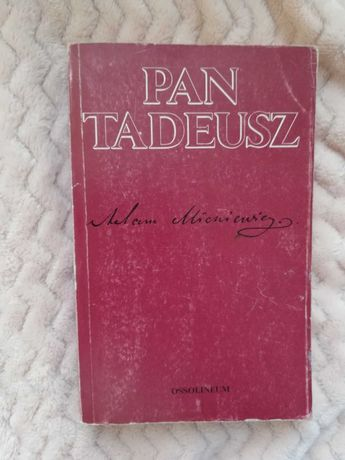 Pan Tadeusz książka