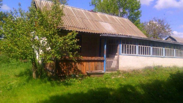 Дом в с. Кривое Попельнянского р-на