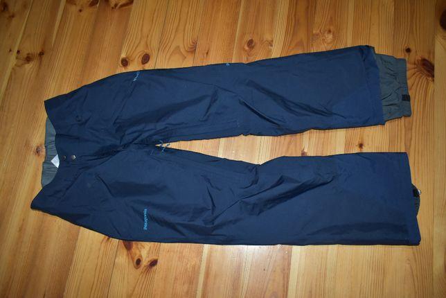 Горнолыжные трекинговые штаны patagonia