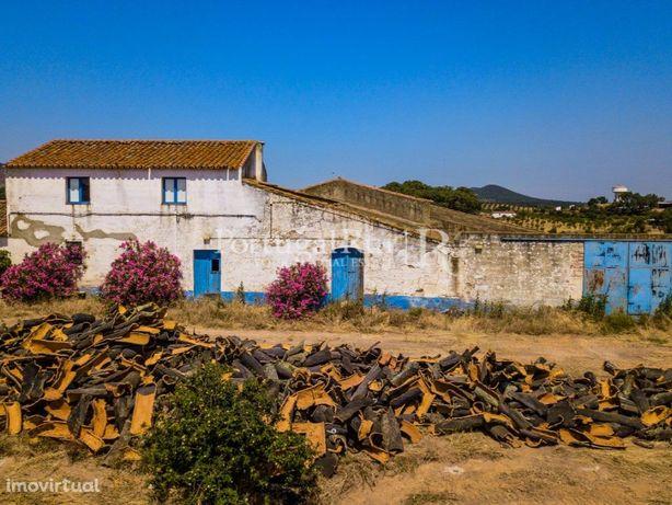 Herdade de 272 hectares, Beja