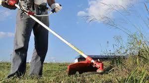 Limpeza de terrenos com rocadora