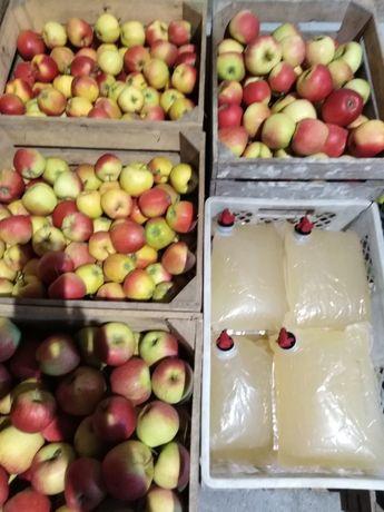 Jabłka różne odmiany oraz soki