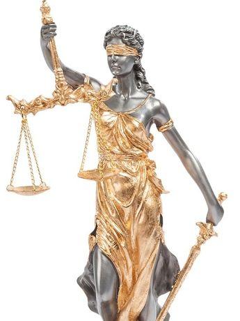 Адвокат Кривий Ріг. Фахівець в сфері сімейного права