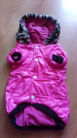 Ubranko, kurtka dla psa york, shih tzu kolor różowy