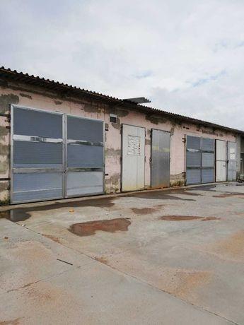 Складські і виробничі  приміщення,  5000 м2